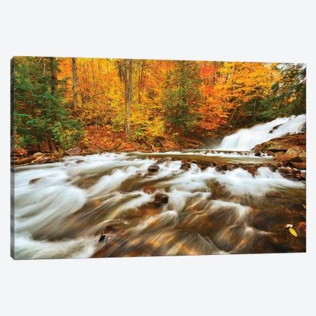 Canada, Ontario, Rosseau. Skeleton River at Hatchery Falls in autumn. 3-Piece Canvas #JYG470} by Jaynes Gallery Canvas Artwork