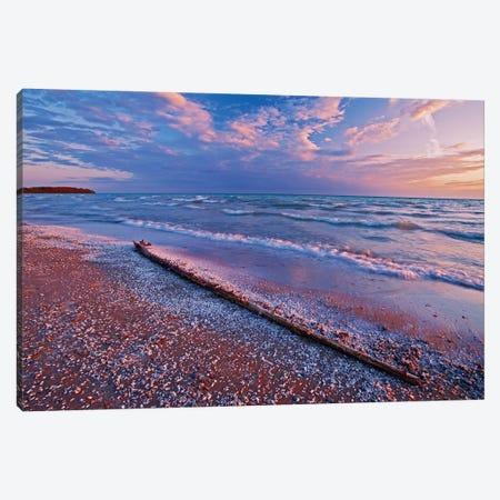 Canada, Ontario, Sandbanks Provincial Park. Pebbles and shells on Lake Ontario shoreline. Canvas Print #JYG471} by Jaynes Gallery Canvas Artwork