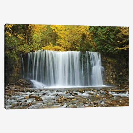 Canada, Ontario. Boyne River at Hoggs Falls in autumn. Canvas Print #JYG476} by Jaynes Gallery Art Print