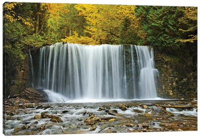 Canada, Ontario. Boyne River at Hoggs Falls in autumn. Canvas Art Print