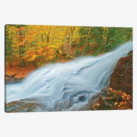 Canada, Ontario. Skeleton River at Hatchery Falls in autumn. Canvas Print #JYG477} by Jaynes Gallery Art Print