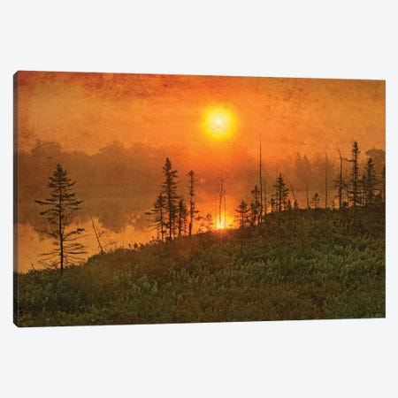 Canada. Wetland sunrise. Canvas Print #JYG512} by Jaynes Gallery Canvas Art Print