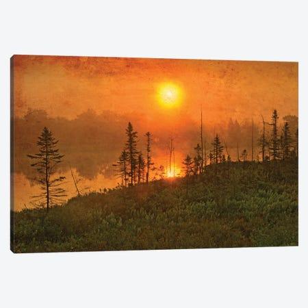 Canada. Wetland sunrise. Canvas Print #JYG512} by Jaynes Gallery Canvas Art Print