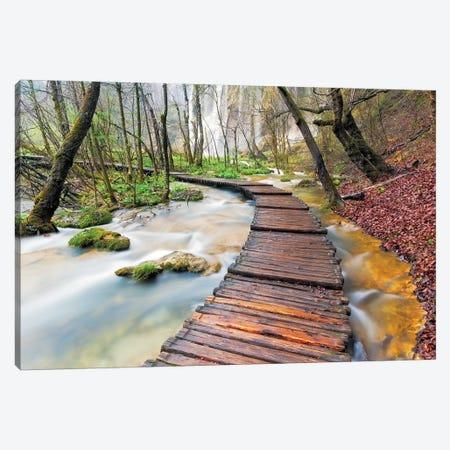 Croatia, Plitvice Lakes National Park. Wooden walkway over stream.  Canvas Print #JYG546} by Jaynes Gallery Canvas Art Print