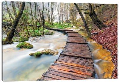 Croatia, Plitvice Lakes National Park. Wooden walkway over stream.  Canvas Art Print