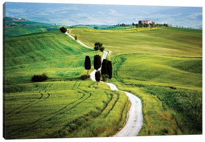 Italy, Tuscany, Val d'Orcia. Road to Terrapile farmhouse.  Canvas Art Print