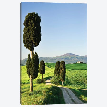 Italy, Tuscany. Landscape with villa Canvas Print #JYG59} by Jaynes Gallery Canvas Art Print