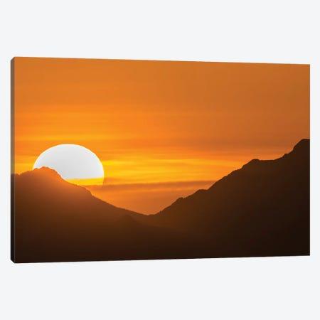 USA, Arizona, Saguaro National Park. Sunset and mountain silhouette.  Canvas Print #JYG619} by Jaynes Gallery Canvas Art