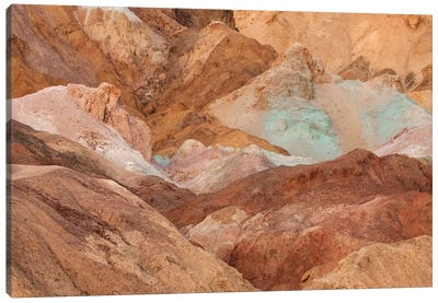USA, California, Death Valley National Park. Arid landscape. Canvas Art Print