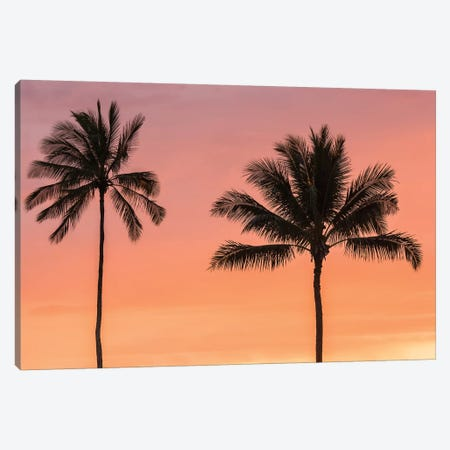 USA, Hawaii, Kauai, Lawai. Palm trees at sunset. Canvas Print #JYG659} by Jaynes Gallery Canvas Artwork