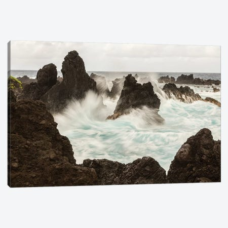 USA, Hawaii, Laupahoehoe Beach Point State Park. Crashing waves on shore rocks. Canvas Print #JYG664} by Jaynes Gallery Canvas Wall Art