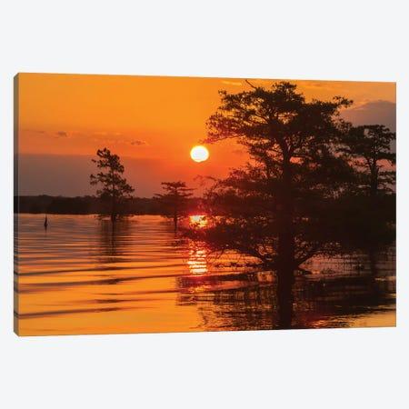 USA, Louisiana, Atchafalaya National Wildlife Refuge. Sunrise on swamp.  Canvas Print #JYG682} by Jaynes Gallery Art Print