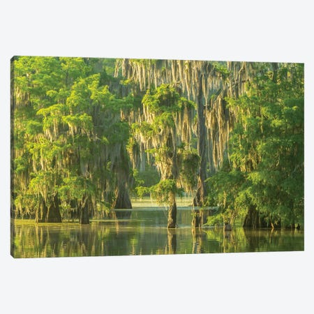 USA, Louisiana, Atchafalaya National Wildlife Refuge. Sunrise on swamp.  Canvas Print #JYG686} by Jaynes Gallery Canvas Art