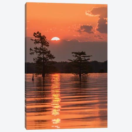USA, Louisiana, Atchafalaya National Wildlife Refuge. Sunrise on swamp.  Canvas Print #JYG689} by Jaynes Gallery Art Print