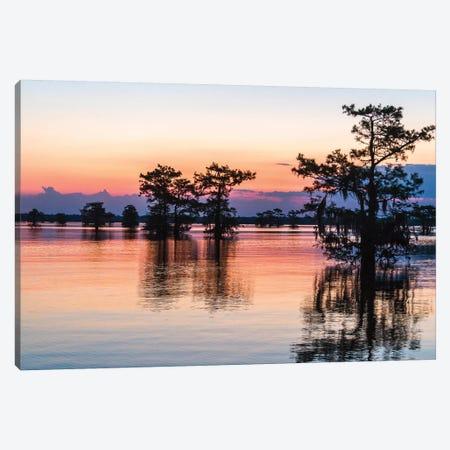 USA, Louisiana, Atchafalaya National Wildlife Refuge. Sunrise on swamp.  Canvas Print #JYG690} by Jaynes Gallery Canvas Artwork