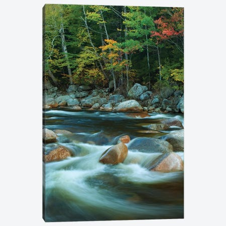 USA, New Hampshire. Autumn trees and flowing river. Canvas Print #JYG723} by Jaynes Gallery Canvas Art