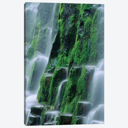 USA, Oregon, Three Sisters Wilderness. Close-up of Proxy Falls. Canvas Print #JYG749} by Jaynes Gallery Canvas Wall Art