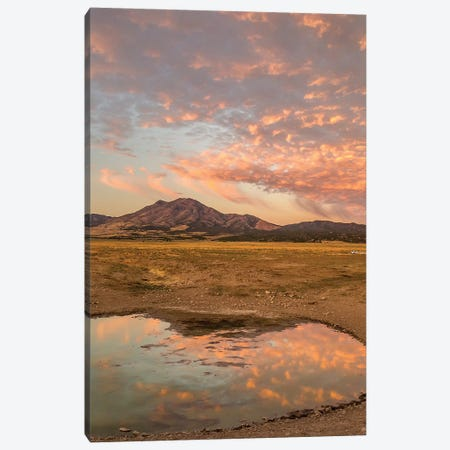 USA, Utah, Tooele County. Sunrise at a waterhole.  Canvas Print #JYG753} by Jaynes Gallery Canvas Print