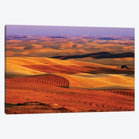USA, Washington State. Palouse farming landscape. Canvas Print #JYG786} by Jaynes Gallery Canvas Art Print