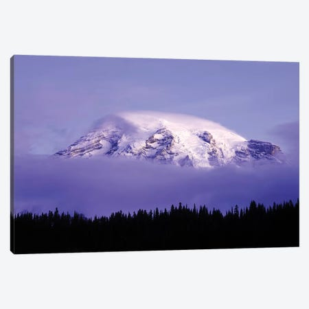 USA, Washington, Mt. Rainier National Park. Clouds on Mt Rainier and forest silhouette. Canvas Print #JYG787} by Jaynes Gallery Canvas Print
