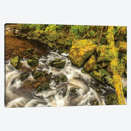 USA, Alaska, Tongass National Forest. Anan Creek scenic I 3-Piece Canvas #JYG78} by Jaynes Gallery Canvas Art Print