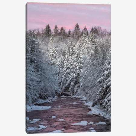 USA, West Virginia, Blackwater Falls State Park. Forest and stream in winter.  Canvas Print #JYG791} by Jaynes Gallery Art Print