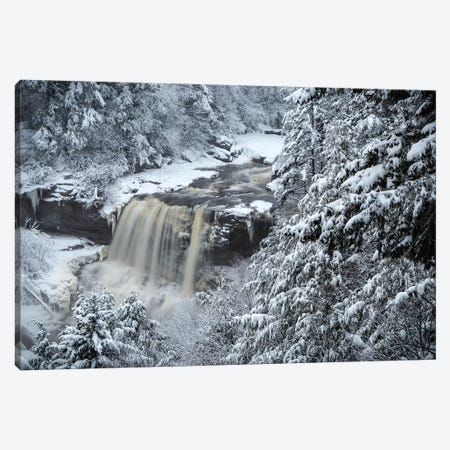 USA, West Virginia, Blackwater Falls State Park. Forest and waterfall in winter.  Canvas Print #JYG792} by Jaynes Gallery Canvas Print