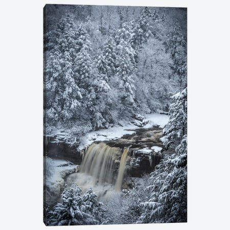 USA, West Virginia, Blackwater Falls State Park. Forest and waterfall in winter.  Canvas Print #JYG793} by Jaynes Gallery Canvas Print