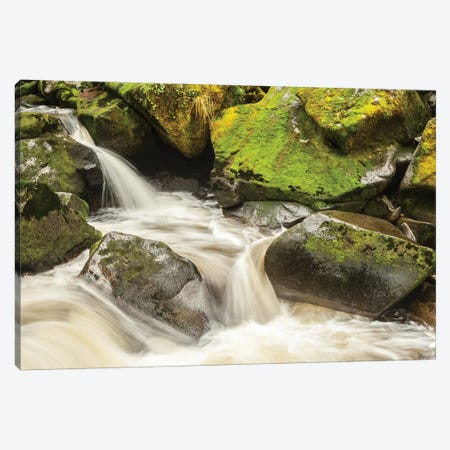 USA, Alaska, Tongass National Forest. Anan Creek scenic II 3-Piece Canvas #JYG79} by Jaynes Gallery Canvas Print