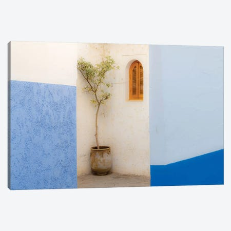 Africa, Morocco, Asilah. Potted Tree And Painted Walls. 3-Piece Canvas #JYG806} by Jaynes Gallery Canvas Art