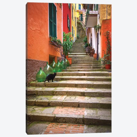 Europe, Italy, Monterosso. Cat On Long Stairway. Canvas Print #JYG924} by Jaynes Gallery Art Print