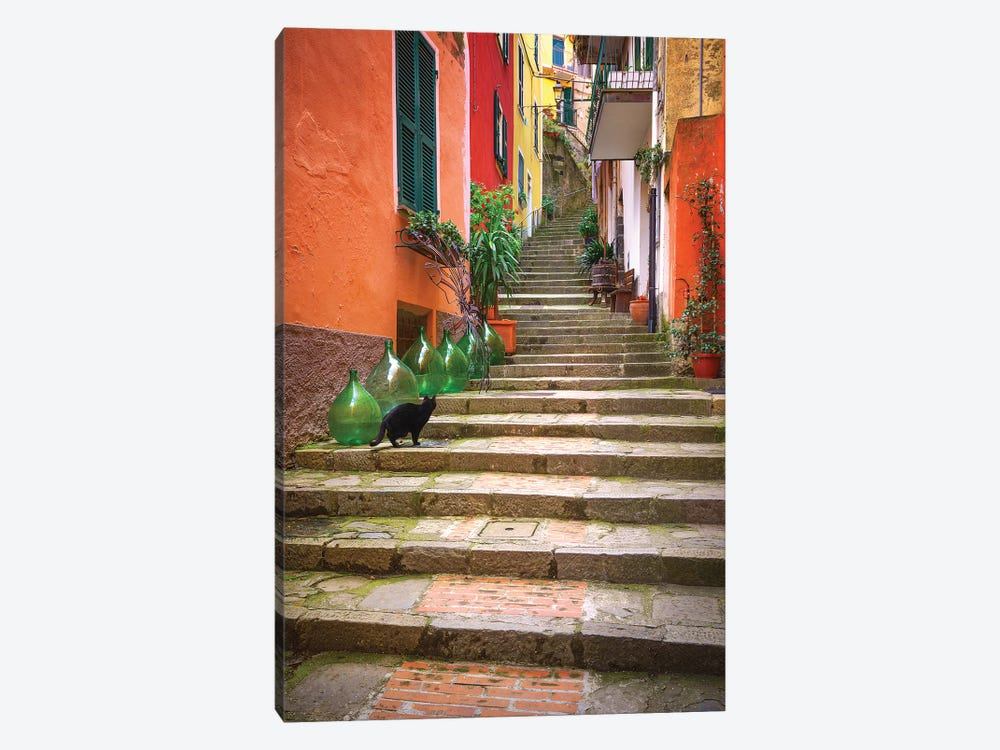 Europe, Italy, Monterosso. Cat On Long Stairway. by Jaynes Gallery 1-piece Canvas Wall Art
