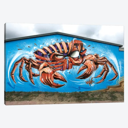 Crab Wall Canvas Print #JYN10} by JAYN Canvas Art