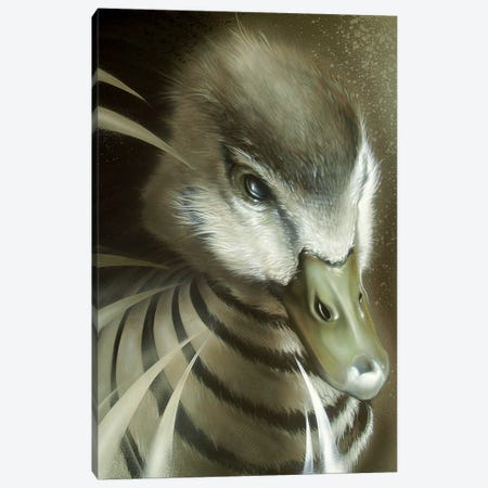 Dynamic Duck Canvas Print #JYN14} by JAYN Canvas Art Print