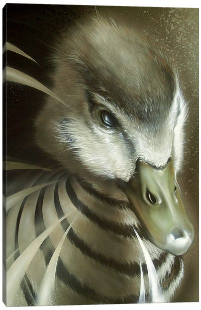 Dynamic Duck by JAYN Canvas Art Print