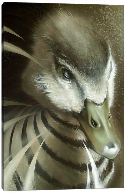Dynamic Duck Canvas Art Print