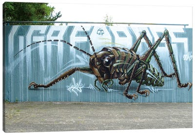 Grashopper Canvas Art Print