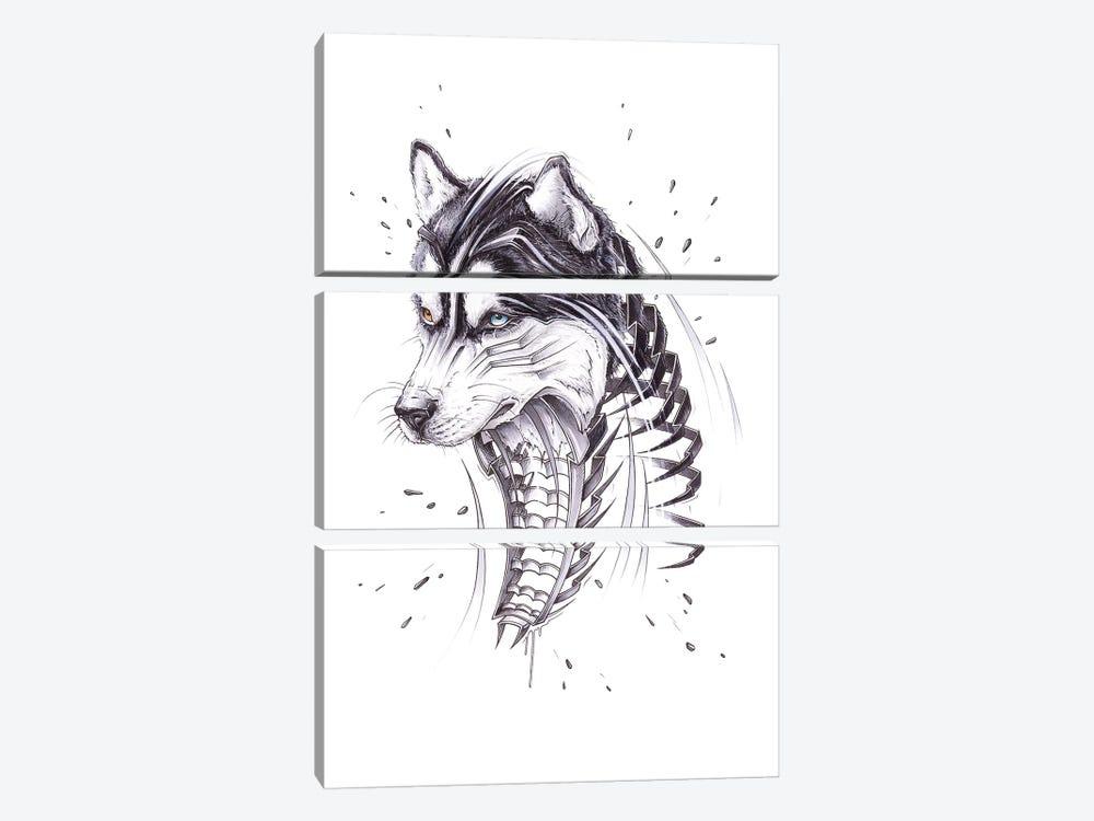 Husky by JAYN 3-piece Canvas Artwork