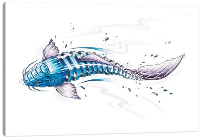 Koi by JAYN Canvas Art Print