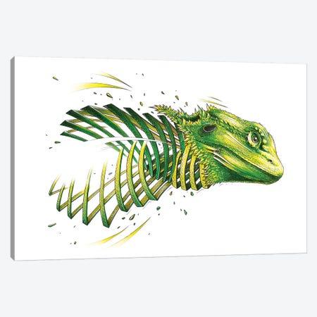 Bearded Dragon Canvas Print #JYN2} by JAYN Canvas Artwork