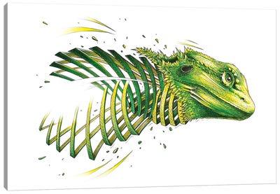 Bearded Dragon Canvas Art Print