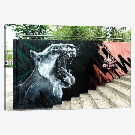Lion Wall I Canvas Print #JYN31} by JAYN Canvas Artwork