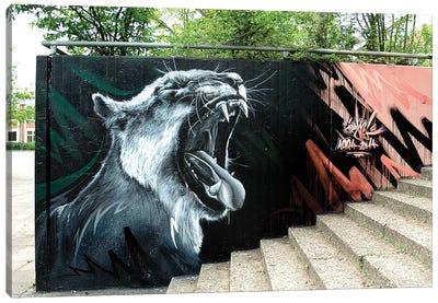 Lion Wall I Canvas Art Print