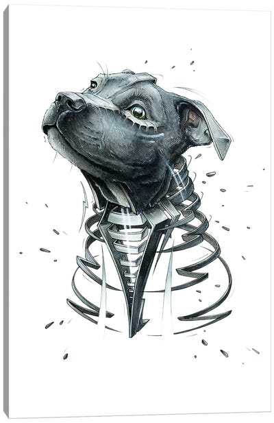 Little Pit by JAYN Canvas Art Print