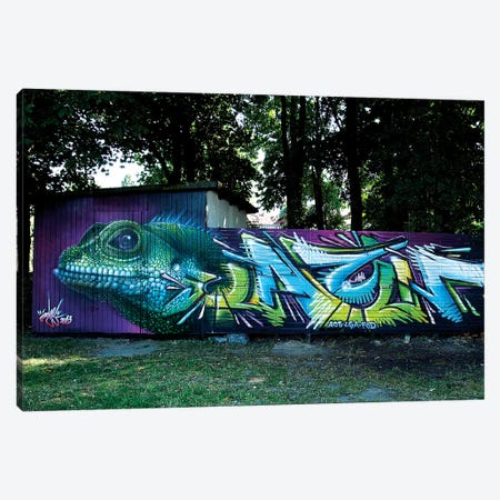 Lizard Wall II Canvas Print #JYN35} by JAYN Canvas Art Print