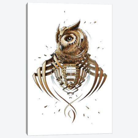 Owl Slice Canvas Print #JYN38} by JAYN Canvas Wall Art