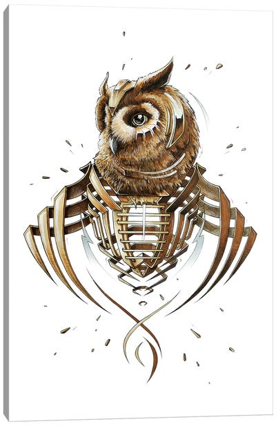 Owl Slice Canvas Art Print