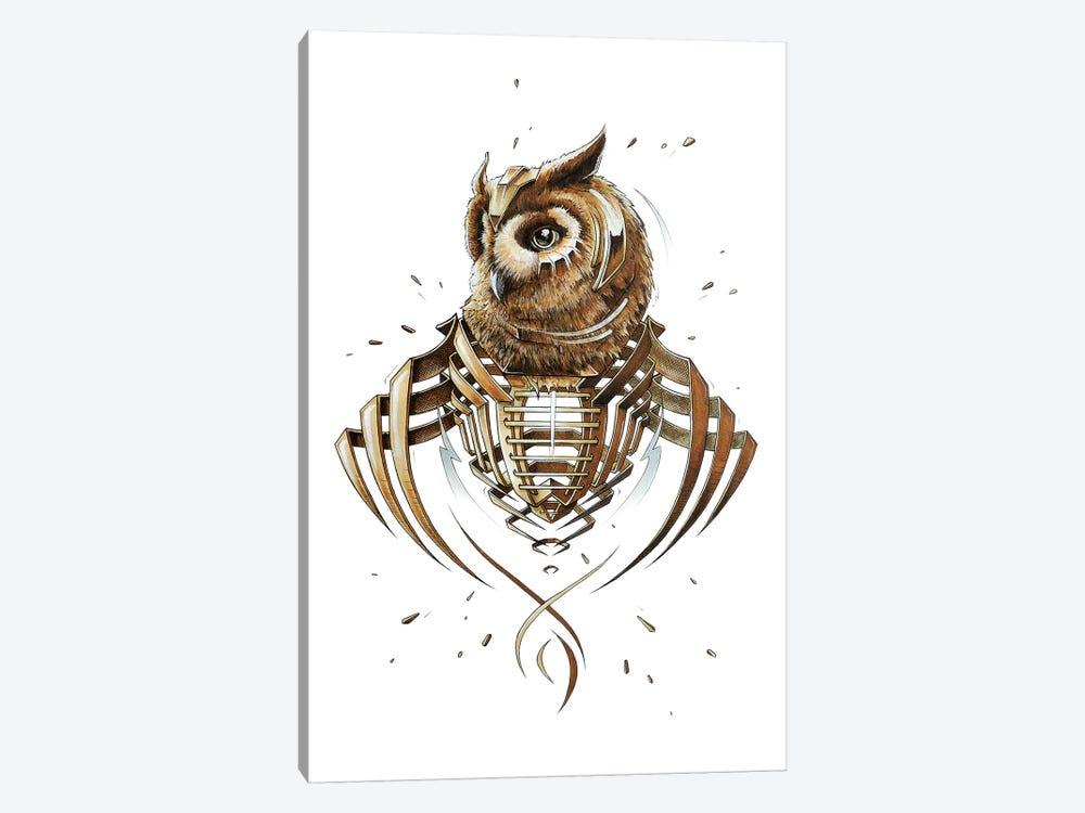 Owl Slice by JAYN 1-piece Canvas Artwork
