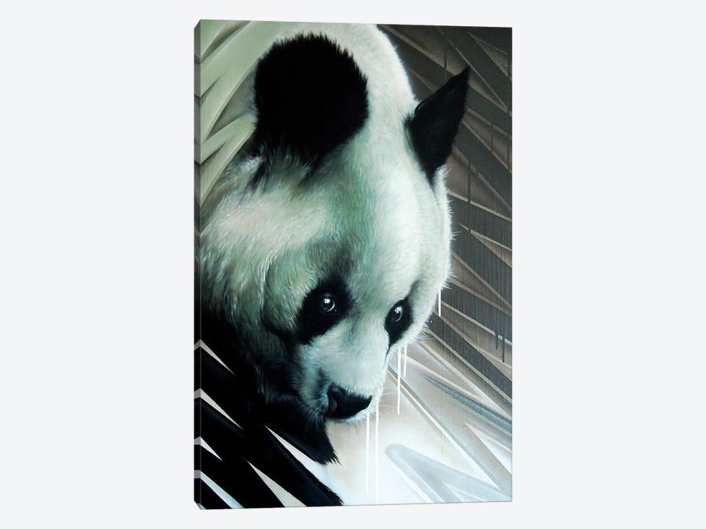 Panda by JAYN 1-piece Canvas Print