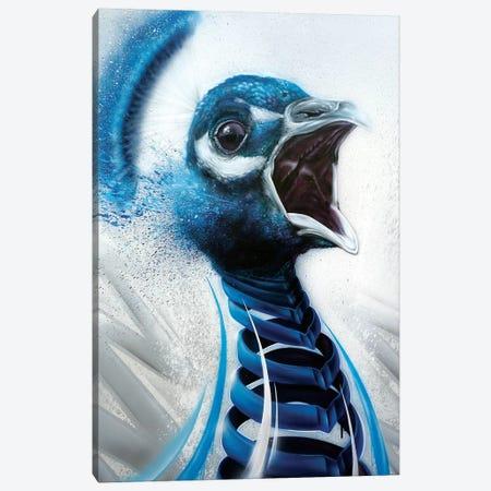 Peacock Canvas Print #JYN42} by JAYN Canvas Art Print